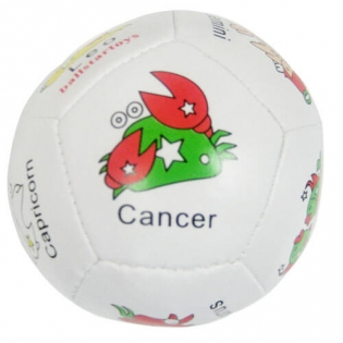 many different types of animal toy soccer ball manufacturer